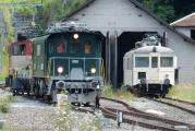 <h5>Das Rangierfahrzeug trifft ein </h5><p>Der Dampbahnverein Zürcher Oberland trifft mit dem Rangierfahrzeug ein</p>