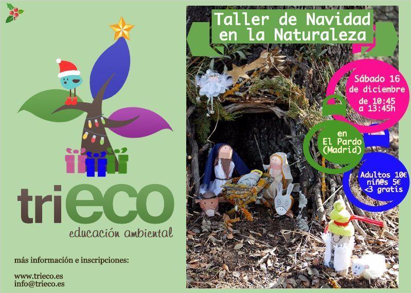 Taller de Navidad en la Naturaleza 2017 – triECO