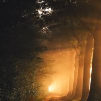 Cuộc chiến tranh giữa ánh sáng và bóng tối