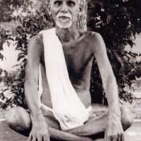 [Bài dịch] Đối thoại với Annamalai Swami: An trú trong Chân Ngã