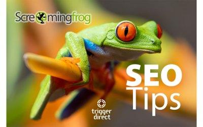 SEO Tip: Screaming Frog Website Crawler