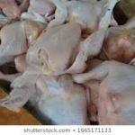 Pasokan Ayam Dari Luar Pontianak Tekan Kenaikan Harga