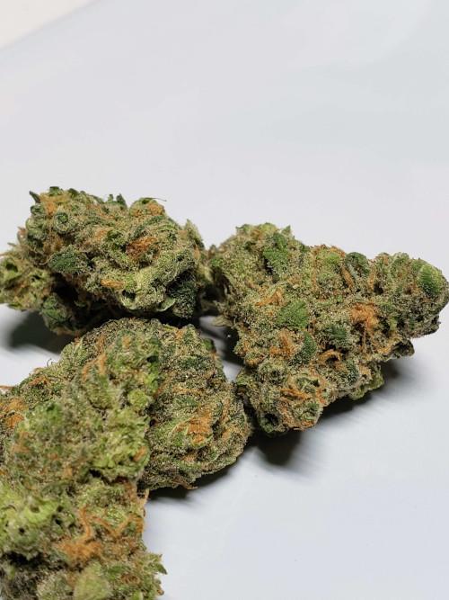 Blue Dream strain cannabis