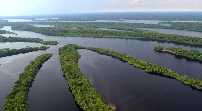 Unidades de conservação têm congresso no Paraná