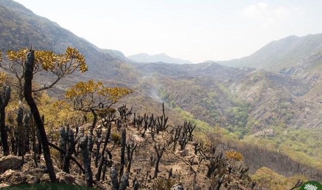 Termina incêndio na Serra do Cipó