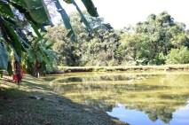 Pesqueiro Lago Azul - Goioerê