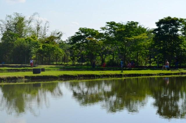 Pesqueiro Pantanal- Terra Boa