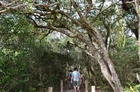 Parque Estadual do Guartelá em Tibagi