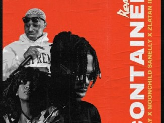 Ckay – Container (Remix) ft. Moonchild Sanelly, Zlatan Mp3 Download