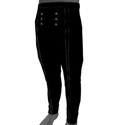 Vanguard Pirate Pants