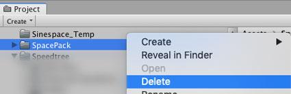 Deleting the SpacePack folder
