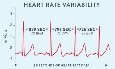 ¿Que es la variabilidad de la frecuencia cardiáca (HRV)?
