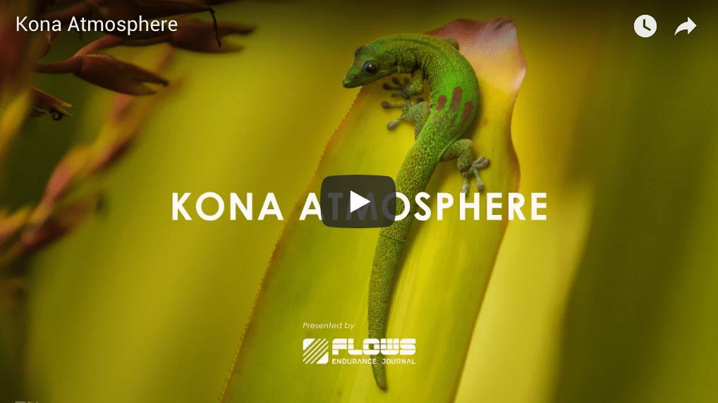 Kona Atmosphere, kona 2018