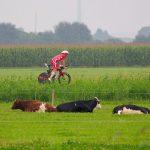 Challenge Almere by Jose Luis Hourcade