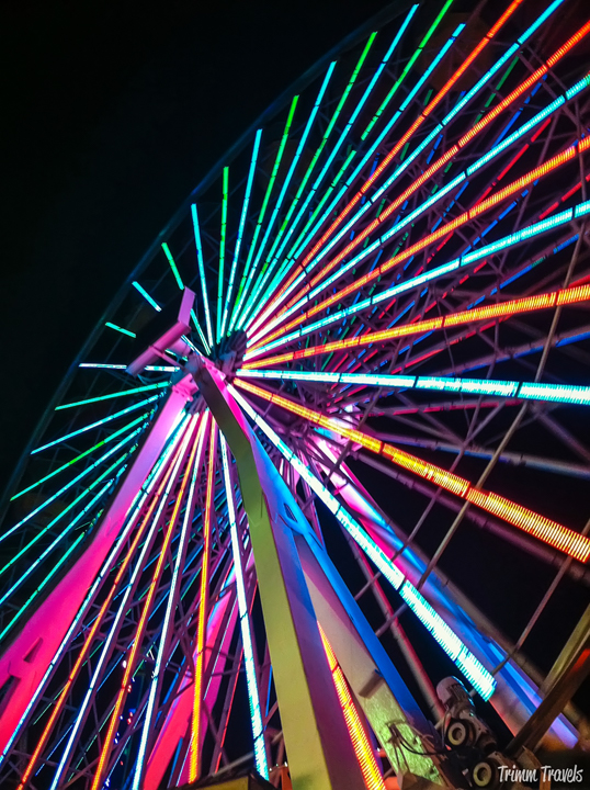 nighttime shot of the ferris wheel lit up on Santa Monica pier Los Angeles California