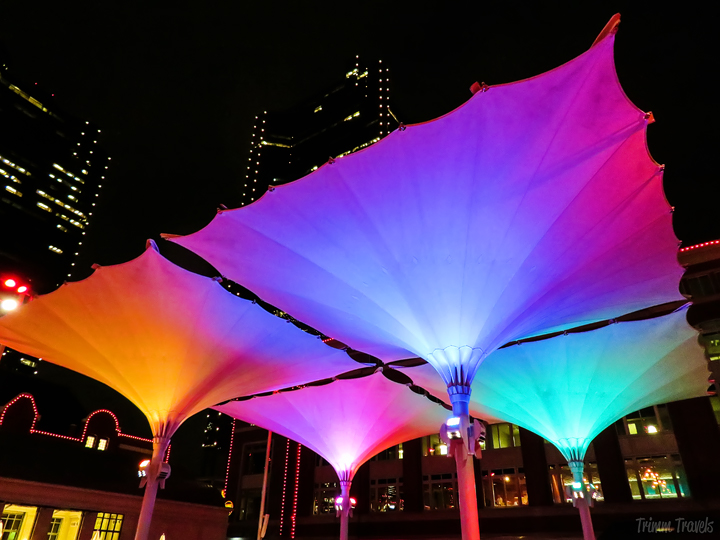 large multi-color umbrellas shaped like martini glasses at night in Fort Worth Texas