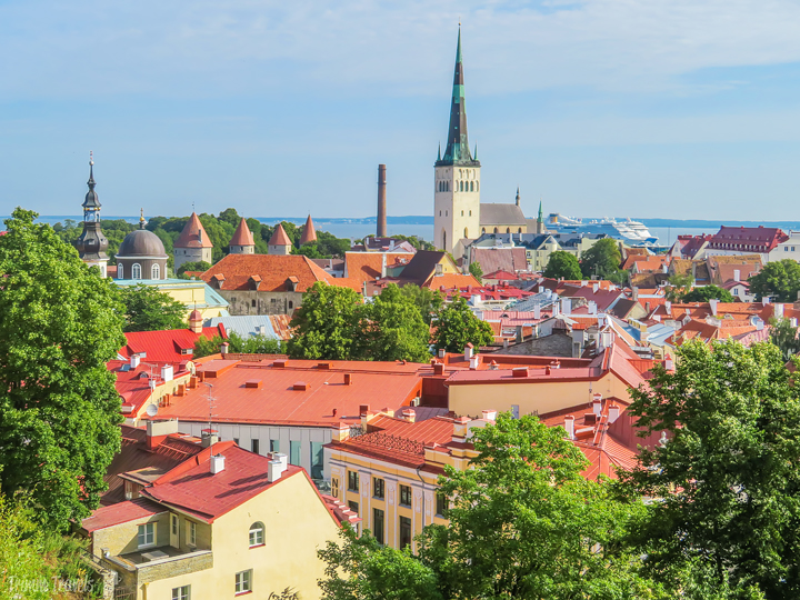 overview of Tallinn Estonia with ocean in background