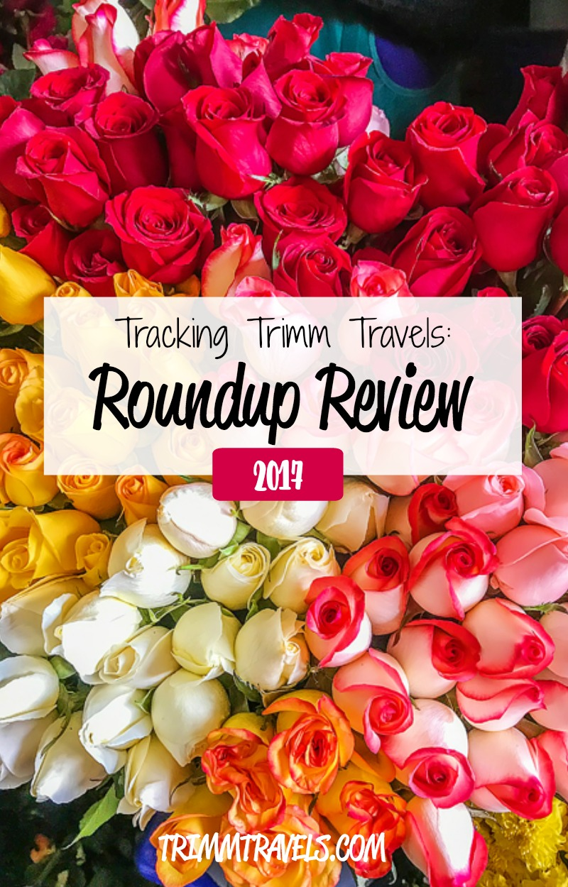 Roundup Review 2017 Pinterest Pin