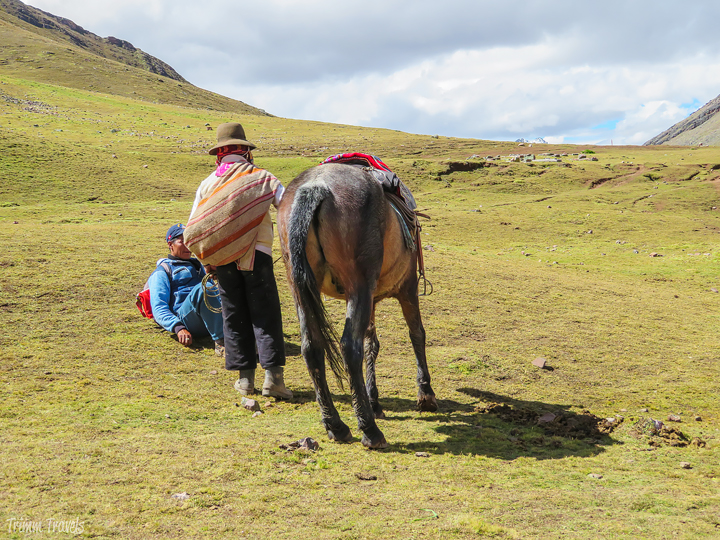 my guide, my horse's guide and my horse