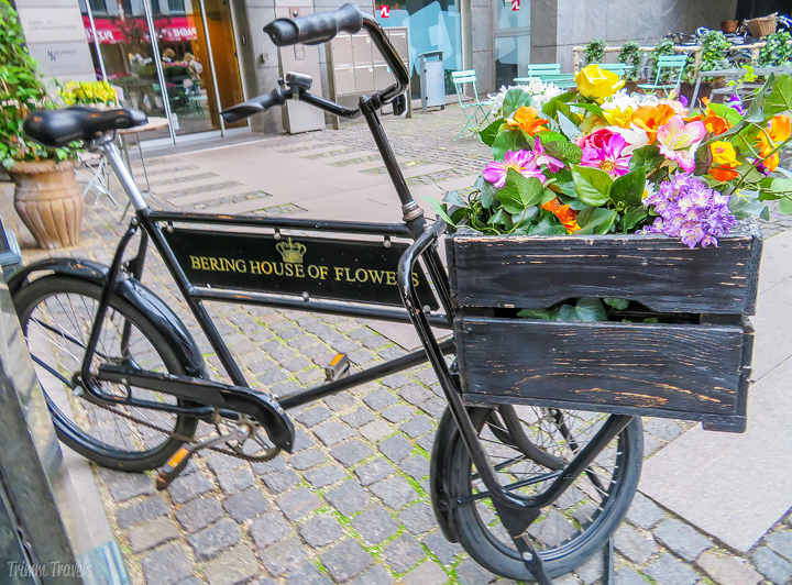 Wanting to visit Copenhagen? Heading there already? Maybe you're going on a Baltic Sea cruise out of the Danish capital and want time to explore or maybe it's the main destination of your trip. Either way, this 3 day Copenhagen itinerary is great if you are wanting to hit the highlights! #copenhagen #denmark #europe #copenhagenitinerary #itinerary #citytour #landmarks #travel #destinations