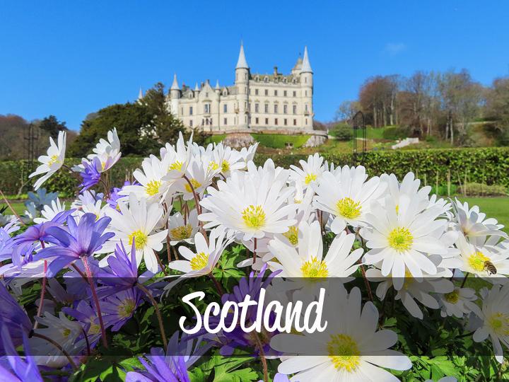 Trimm Travels: Scotland