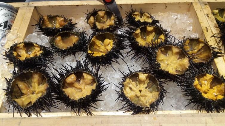 Urchin' purchasin'