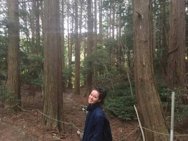 Gooning in the forests of Izu.