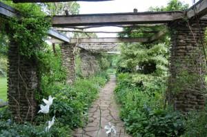 garden06