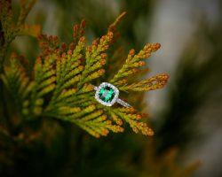ring-2774298_1920