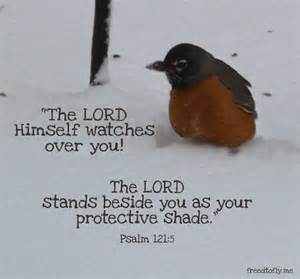 Transitional Friday: Psalms 121:5-6--The Lord Watches Over You