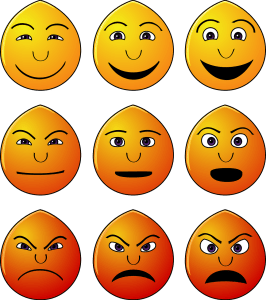 Understanding our emotions leads us to emotional wellness
