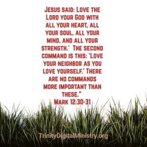 Mark 12:30-31 image