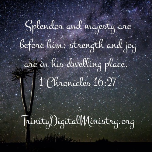 1 Chronicles 16_27 image