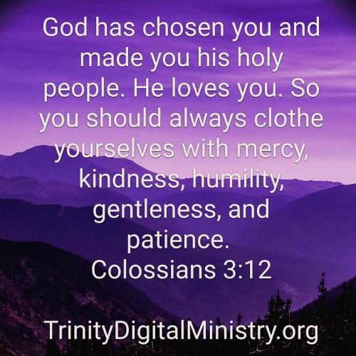 Colossians 3_12 image