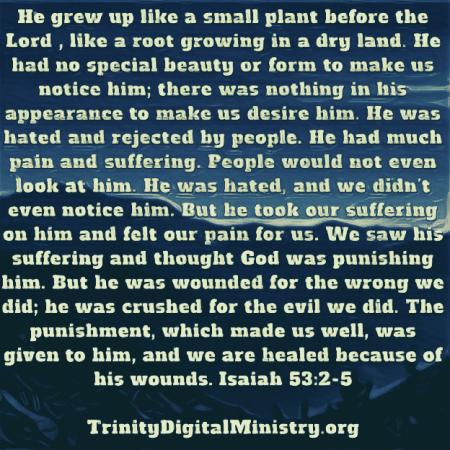 Isaiah 53_2-6 image