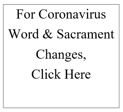 Coronavirus Cover for Web page 2