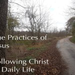The Practices of Jesus
