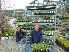 Rose and Bert unloading flats of organic vegetable starts