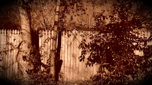 God Moves Over The Fence