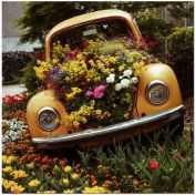 flowers in car