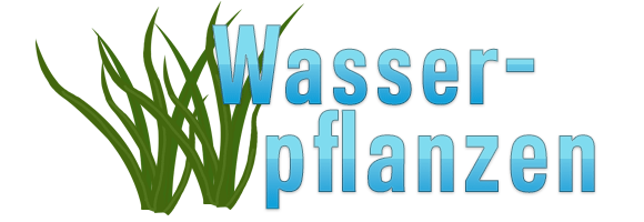 Triops_Wasserpflanzen