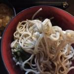 絶品立ち食い蕎麦。西新橋、さだはる。