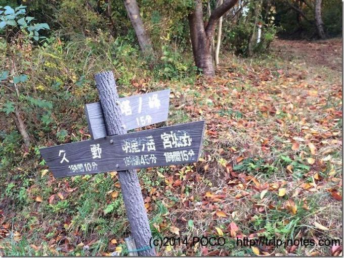 塔ノ峰への道