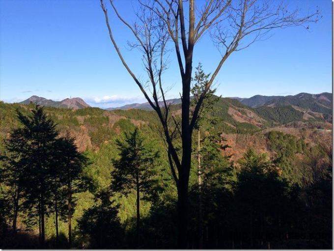 伊豆ケ岳への道