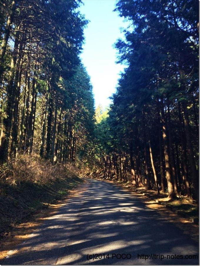傘杉峠までの道