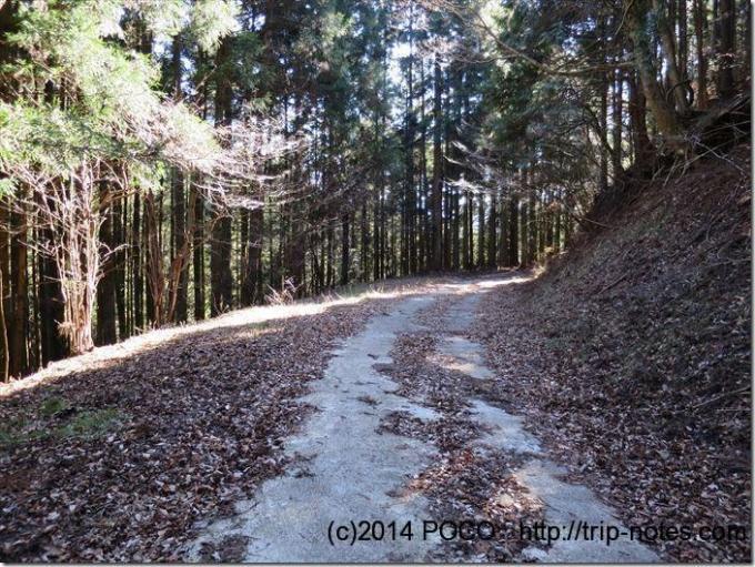 猿橋駅への林道