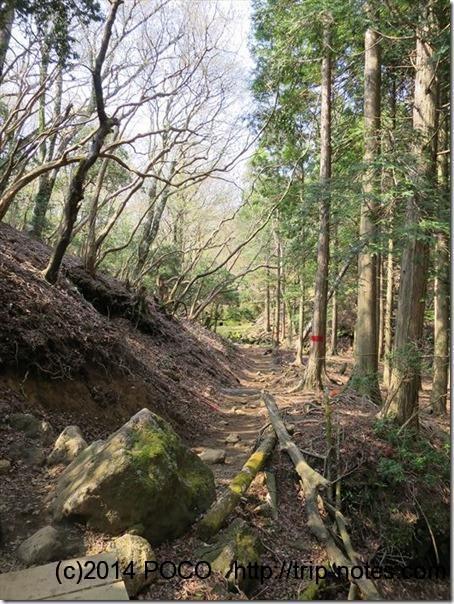 万二郎岳への山道