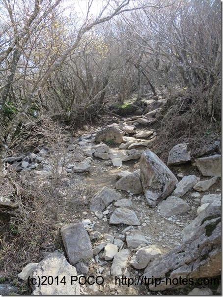 万三郎岳への道