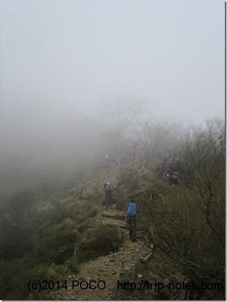 塔ノ岳への道