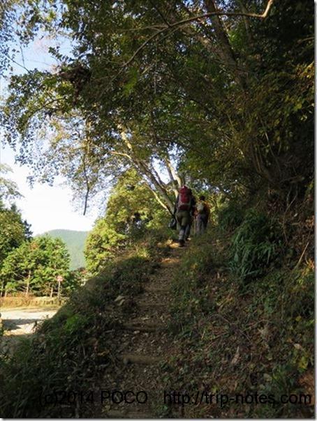 丹沢登山道整備